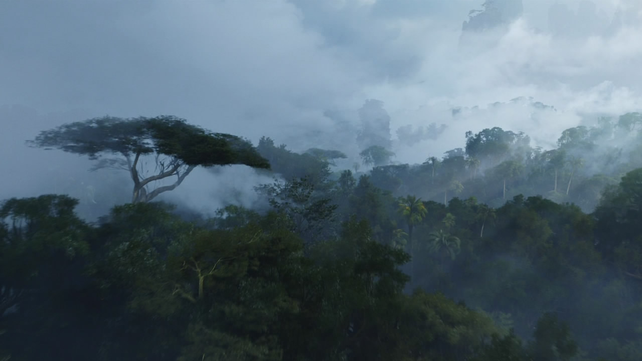 Большие деревья на Пандоре