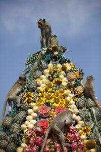 Праздник обезьян